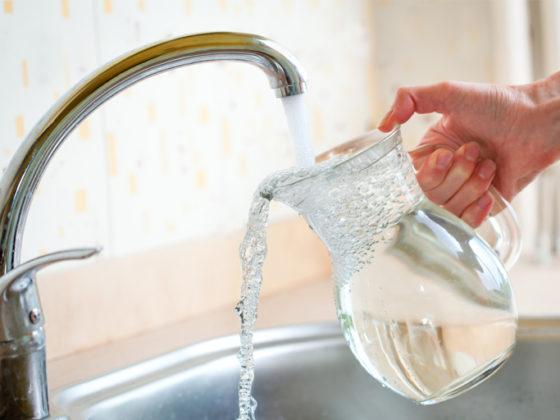 Asturviesca-Agua grifo