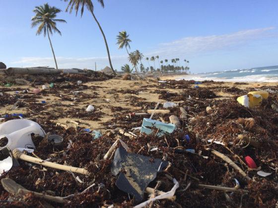 La isla del plastico